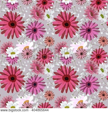 Seamless Pattern With Chrysanthemums, Chamomile, Daisy.pink, White Flowers On A Gray Background. Ill