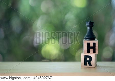 One Chess Pieces Staying On Wood Block Text Of Hr, Against Nature Background. Concept Of Hr Recruitm