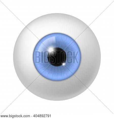 Realistic Human Eyeball. Anatomy Blue Eye Close Up Element, 3d Round Iris Retina And Pupil, Optical