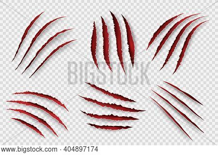 Tiger Scratches. Danger Scary Claw Symbols For Horrors Monster Paws With Blood Shapes Decent Vector