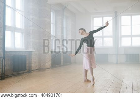 Portrait of an elegant refined ballet female dancer performing ballet dance in dance hall