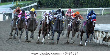 Jimmy Creed Wins The 2012 Malibu Stakes
