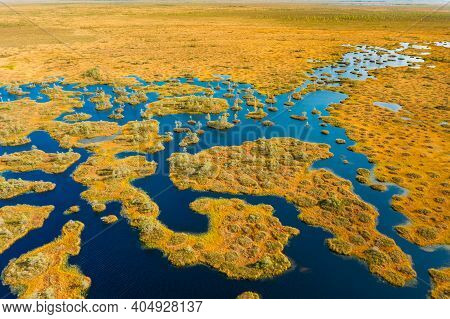 Miory District, Vitebsk Region, Belarus. The Yelnya Swamp. Upland And Transitional Bogs With Numerou