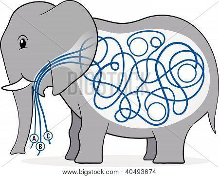Elephant Maze Kiddies Game