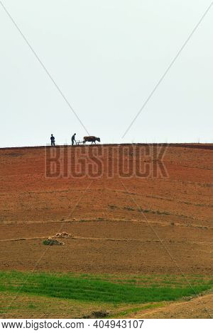 North Korea, Pyongyang - April 30, 2019: Countryside Landscape, Dprk. Peasants Plowing A Field With