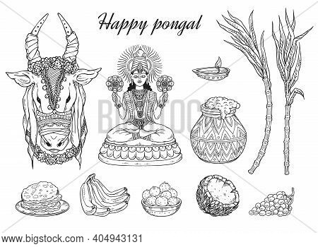 Set Of Vector Sketches For National South Indian Happy Pongal Holiday.