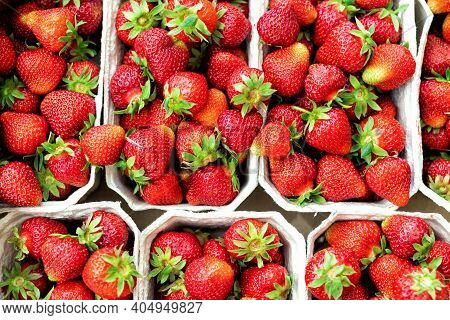 Red Ripe Juice Fresh Organic Strawberry Packed In Eco Friendly Paper Cardboard Boxed At Wholesale St