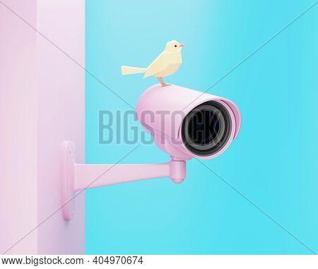 Pink Cctv Security Camera And Yellow Bird, 3d Render
