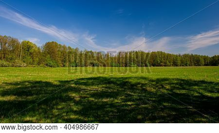 Shadow In The Meadow And Forest On A Sunny Day. Panoramic. Spring Season. Ukraine. Europe.