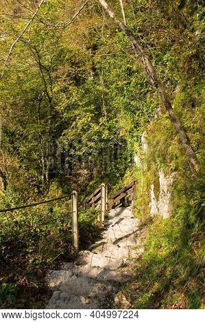A Footpath Along The Tolminka River Which Flows Through Tolmin Gorge In The Triglav National Park, N