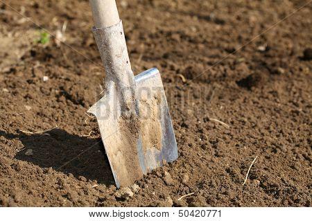 Shovel In The Ground Stock