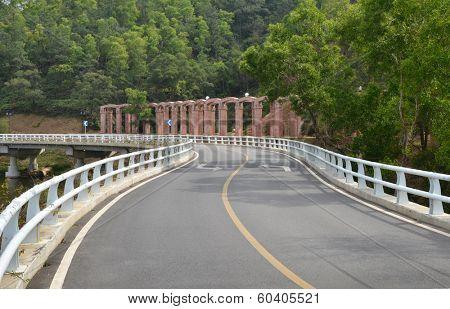 Asphalt twisty highway bridge