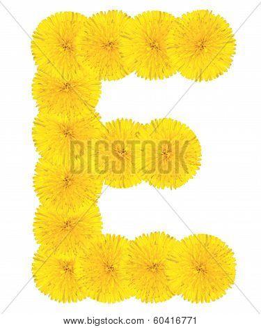 Letter E Made From Dandelions