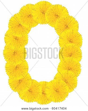 Letter O Made From Dandelions