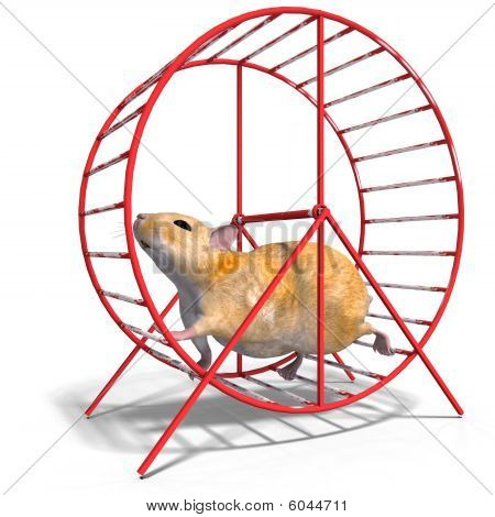 Niedliche Hamster In einem Hamsterrad