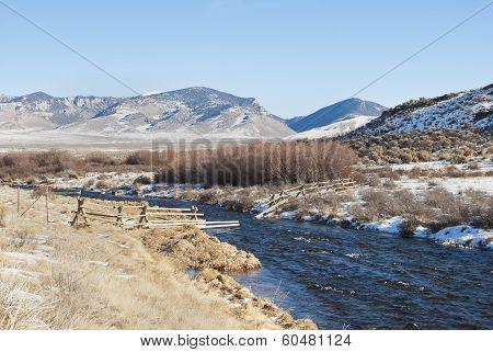 Winter Birch Creek