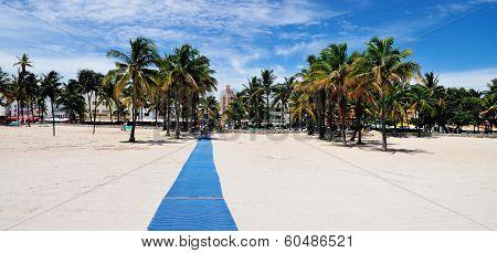 Panoramic Beach Carpet Entrance