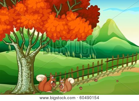 Illustration of the two squirrels under the big tree