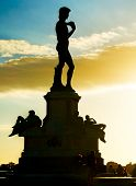 David statue at Micheal Angelo Park . Florence Italy poster