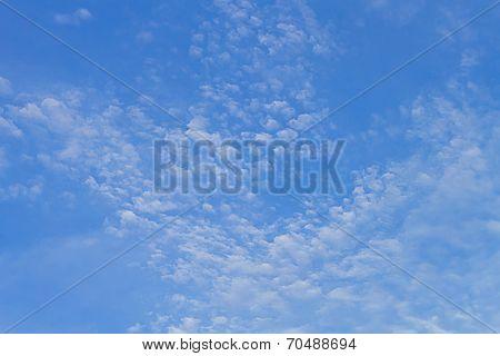 White Cloud Floats On The Blue Sky