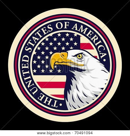 American bald eagle against USA flag background.