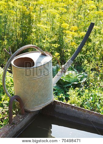 Watering Can On Basin With Water For Garden