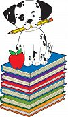 A dalmatian puppy with a pencil in his mouth is sitting on a stack of books poster
