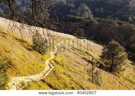 Steep Dirt Path Up Hill Side Mount Diablo California