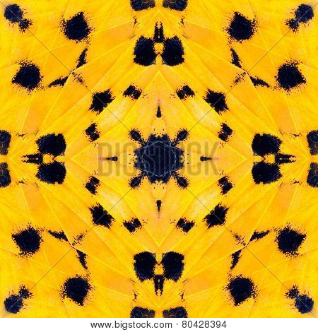Best of Yellow Background Pattern made from butterfly's wing texture