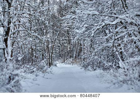 Winterland Bavaria