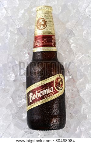 Bohemia Beer On Ice
