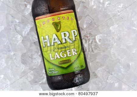Harp Lager On Ice Closeup