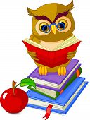 Cartoon wise owl. sitting on Pile book and red apple poster