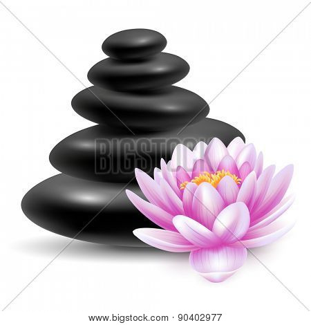 Spa still life with black massage stones and pink lotus flower. Vector illustration. Isolated on white background.