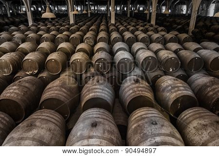 Big Wine Cellar