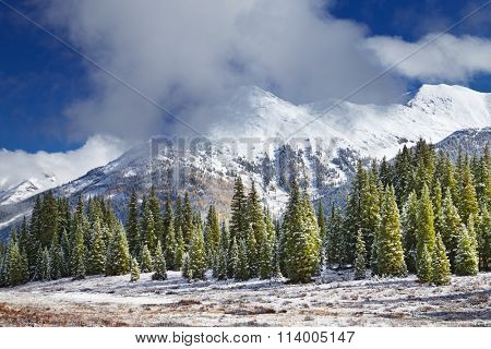 Landscape with snowy mountains and forest, Colorado, USA