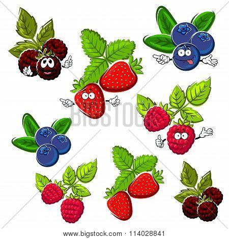 Strawberry, raspberry, blueberry and blackberry