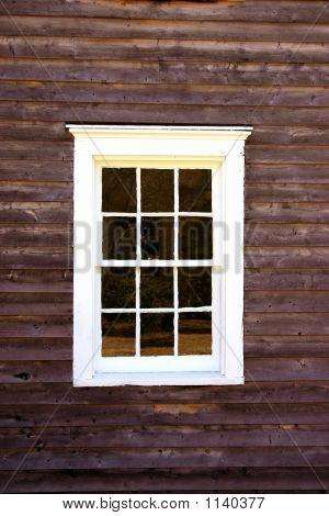 Window - 19Th Century Design