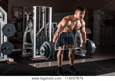 Muscular Man In Gym