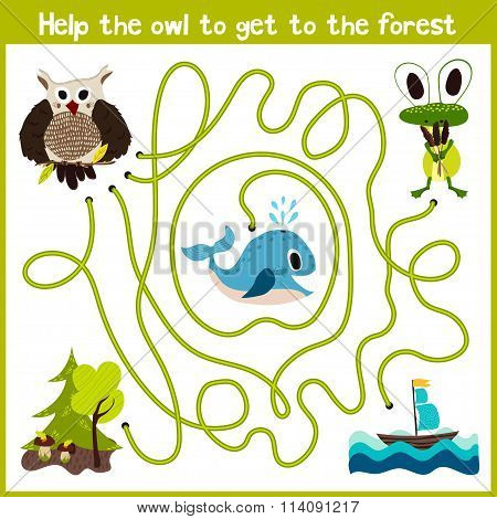 Cartoon Of Education Will Continue The Logical Way Home Of Colourful Animals.help The Owl To Fly Hom