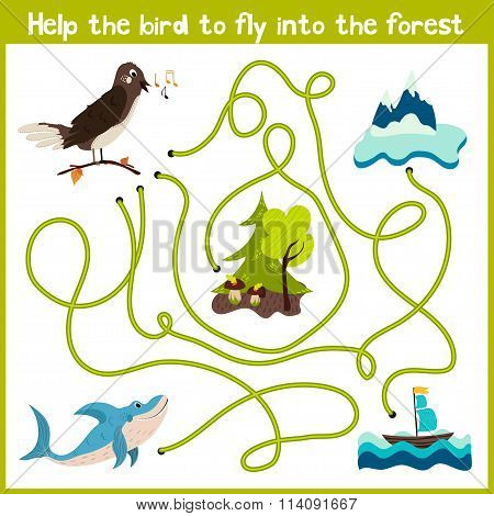 Cartoon Of Education Will Continue The Logical Way Home Of Colourful Animals. Help The Bird Nighting