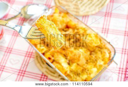 Tortiglione ( Twisted Spiral Maccheroni) Baked Pasta Fork