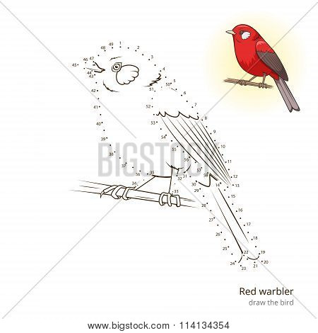 Red warbler bird learn to draw vector