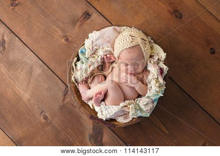 Newborn Girl Sleeping In Wooden Bowl