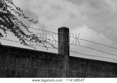 Abstract Barbed Wire
