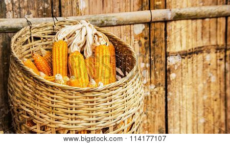 Gold Orange Corn In Basket Haking On Old Bamboo