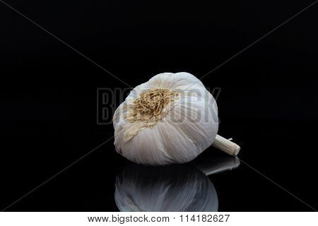 Garlic against a black background