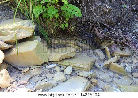 Mountainous terrain, streams of spring and vegetation, stone grounds
