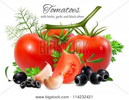Red ripe tomatoes with herbs, black olives and garlic. Fully editable handmade mesh. Vector illustration.