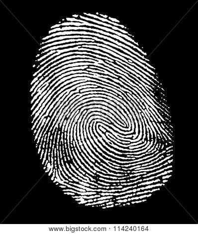 White Fingerprint